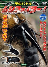 甲虫バトル ムシファイター_イメージ