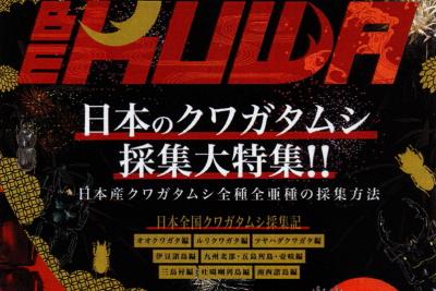 BE・KUWA(ビー・クワ)80号★日本のクワガタムシ採集大特集!!