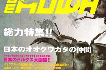 BE・KUWA(ビー・クワ)71号★総力特集!!日本のオオクワガタの仲間