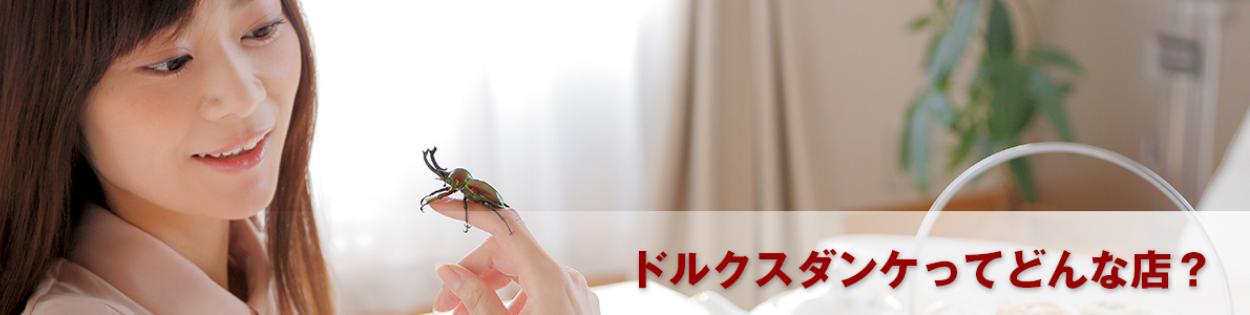 ショップ紹介ビジュアル画像