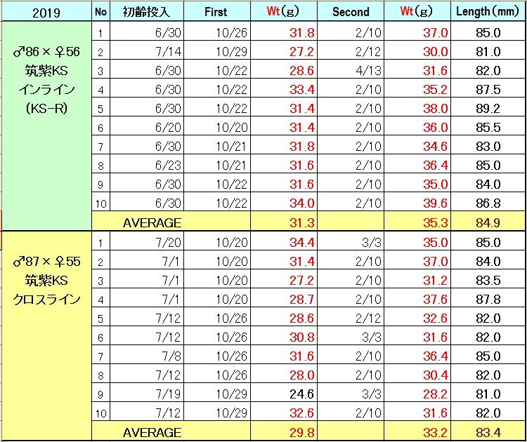菌糸ビンでの92mmオオクワガタ飼育データ表