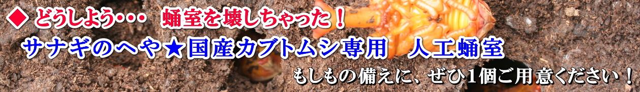 サナギのへや★国産カブトムシ専用 人工蛹室 画像