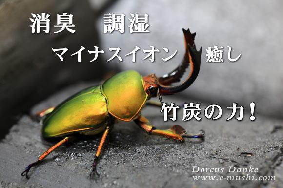 竹炭_イメージ
